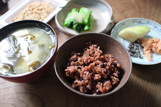 発芽発酵玄米ごはん 口コミ体験談
